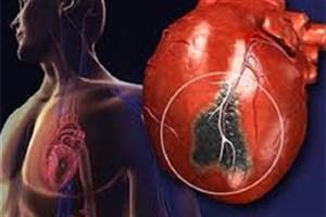 کشف راهی جدید برای هدایت سلول های بنیادی به بافت قلبی