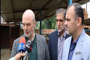 بنیاد برکت ۸۰۰ طرح اشتغالزایی جدید در مازندران راهاندازی میکند
