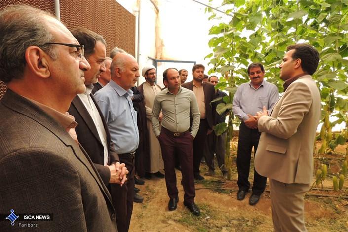 بازدید از گلخانه تولید بذر خیار هیبرید  واحد دهاقان