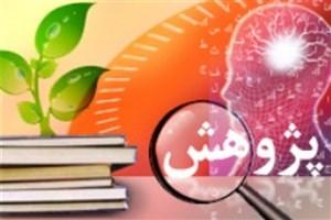 پژوهش ثروت آفرین دغدغه اصلی دانشگاه آزاد اسلامی است/ تعیین سهم 10 درصدی پژوهش در بودجه امسال دانشگاه آزاد اسلامی