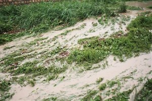تمدیداقساط تسهیلات کشاورزان خسارتدیده از سیل تا پایان شهریور