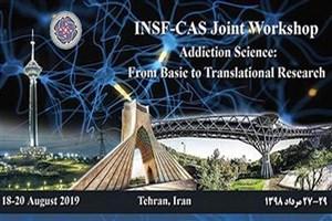 همکاریهای علمی ایران و چین در حوزه دانش اعتیاد گسترش مییابد