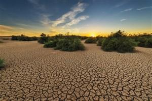 گرم شدن کره زمین در تاریخ منحصربهفرد است