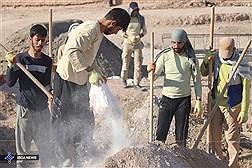 حضور ۱۸۰۰ گروه جهادی در جشنواره جهادگران/ ۵۰۰ شورای جهادی شهرستانی در کشور فعالند