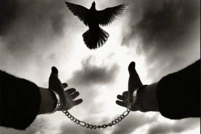 نجات۵۳۹ محکوم به قصاص