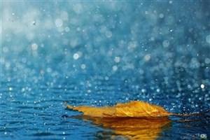 بارش باران در سواحل دریای خزر/آخر هفته گرم در شمال