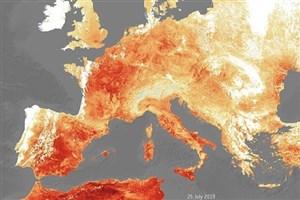 ۴۰۰ هلندی در یک هفته براثر موج گرما قربانی شدند