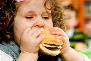 غذاهای چرب با مختل کردن مغز باعث چاقی میشوند