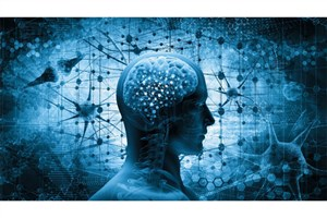 Iranian Researchers Called for Building Non-Invasive Brain Stimulation System