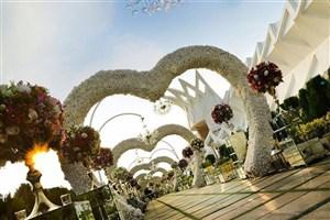 تجملات در عروسی از محضر لوکس تا آبشار شکلات/حواشی هزار رنگ یک مراسم