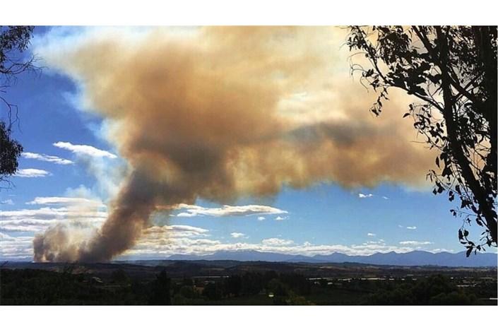 تخلیه صدها گردشگر از جزیرهساموس در یونان به دلیل آتشسوزیهای طبیعی
