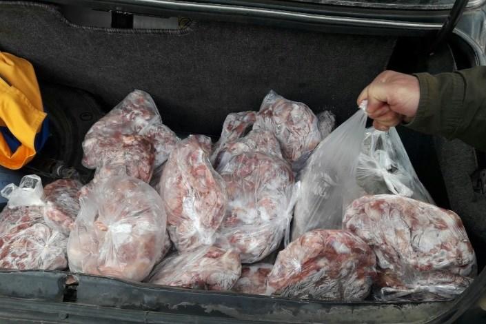کشف ۲۵۰کیلوگرم گوشت فاسد