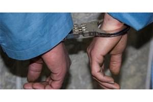 مزاحم بانوان در بریانک دستگیر شد
