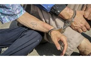 سرقت گوشی  کارگر شهرداری حین آبیاری فضای سبز/ سارقان دستگیر شدند