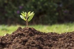 علل  عدم ورود دانش و فناوری به حوزه خاک باید بررسی شود