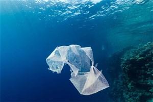 تولید و عرضه تجاری پلاستیکهای زیستتخریبپذیر