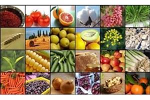 سالم سازی ارقام مختلف محصولات باغی
