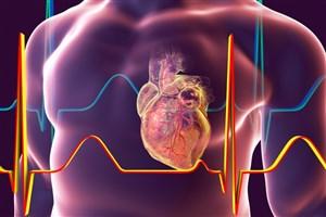 ساخت  دستگاه تشخیص سریع حمله قلبی ایرانی