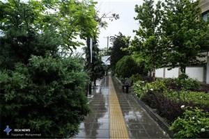 ادامه بارش برف و باران در جاد های 5 استان/ترافیک در ورودی تهران