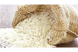 سارقان 2600 کیلو  برنج دستگیر شدند