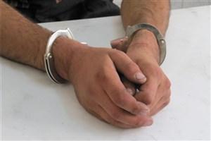 مدیر عامل شرکت پشتیبانی امور دام بازداشت شد