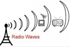 تاثیر امواج رادیویی بر بدن حشرات