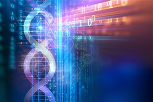 Researchers Discover a Gene Acts as a Master Regulator of Schizophrenia
