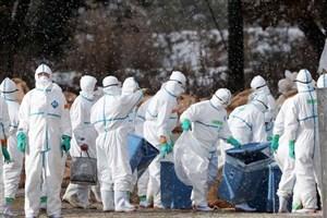 ویروسی که می تواند 80 میلیون نفر را در 36 ساعت بکشد