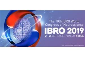 Iran's Representative Ranks 3rd in IBRO2019