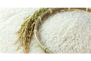 برنج تراریخته در بازار وجود ندارد