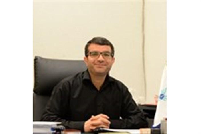 مجتبی نجفی