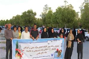 همایش پیاده روی کارکنان دانشگاه آزاد اسلامی در سواحل نیلگون خلیج فارس برگزار شد
