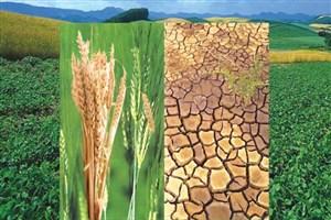 انتشار سه مجله تخصصی کشاورزی در واحد گرگان/  پرداخت حقوق به دانشجویان فعال در سرای نوآوری گیاهان زینتی