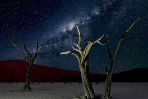 فتوکلیپی جذاب از عکسهای فضا