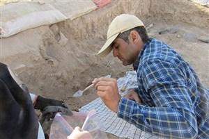 کشف بقایای ساختمان ۵۴۰۰ ساله توسط کاوشگران دانشگاه آزاد ورامین ـ پیشوا