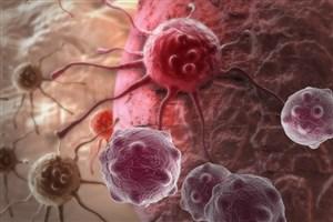 ترکیب داروی شیمیدرمانی و ویتامین B درون نانوذرات برای مقابله با سرطان