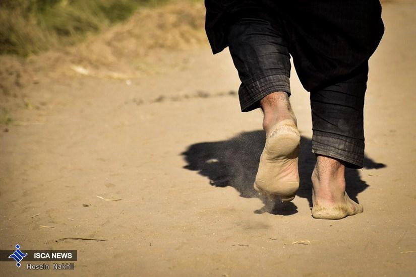 پیاده روی اربعین حسینی - منطقه الجربوعیه
