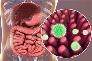 کشف راهکار درمانی کشندهترین عفونت دنیا