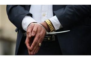 همدست «سلطان سکه» دستگیر شد