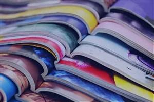 مجلات علمی و پژوهشی در حوزه مدیریت و محیط زیست در واحد ایلام  منتشر میشود/ ایجاد سرای نوآوری در حوزه گردشگری مذهبی و IT