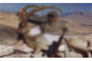 شکار شکارچی قانونی بود