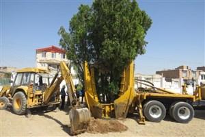 تولید ماشین درختکن برای اولین بار در واحد اراک/ مجلات حقوقی در دانشگاه منتشر میشود
