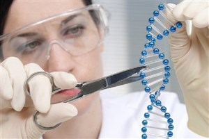 وقوع۹۰ درصد بیماریها بر اساس استعداد ژنتیکی/ جدیدترین دستاوردهای علمی در زمینه ژنتیک
