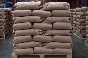 صادرات ماهانه ۲٫۵ میلیون کیسه نانویی زیستتخریبپذیر