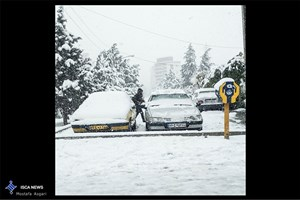 استقرار 222 دستگاه ماشین آلات خدمات شهری در سایتهای برف روبی