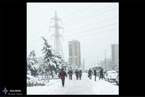 مناطق شمالی تهران در صورت بارش برف آمادگی کامل دارند