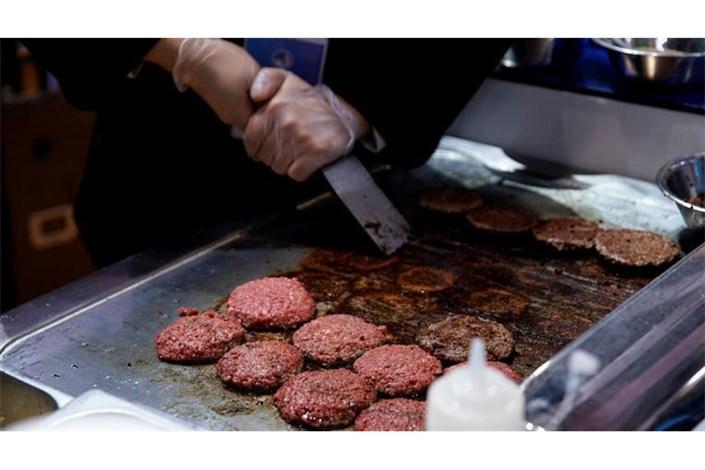 ماجرای گوشتهای آلوده در آلمان
