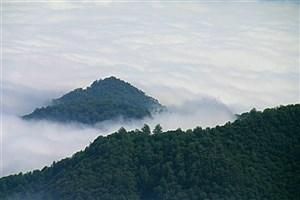 نجات گردشگران مفقود شده  جنگل ابر