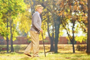 چه عاملی باعث پیری مغز انسان میشود؟