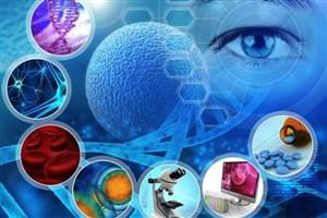35 محصول سلول بنیادی توسط یک شرکت دانشبنیان تولید و تجاری سازی شد